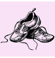 sport sneakers shoes vector image