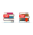 TXT books stacks icons vector image vector image