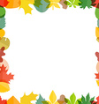 Different color autumn leaves greeting frame vector image
