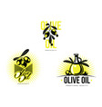 olive oil logo icon concept set isolated vector image vector image