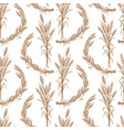 pattern of bunches of ripe wheat vector image