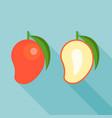 red mango and half mango vector image vector image