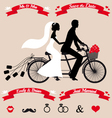 wedding couple on tandem bicycle set vector image