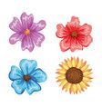 beautiful flowers set decorative icon vector image
