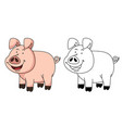 educational coloring book-pig vector image