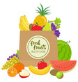 paper bag with fruits vector image vector image