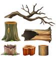 set of tree wood vector image