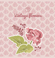 vintage flourish background vector image vector image