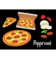 Whole pizza and slices of pizza pepperoni in open vector image