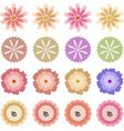 cute pattern with multicolored flowers vector image vector image