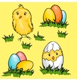 Easter cartoon chicks and eggs in green fresh vector image vector image