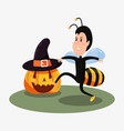 halloween celebration day vector image