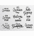 hello summer lettering summer calligraphy vector image vector image