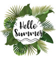 hello summer time wallpaper fun party vector image