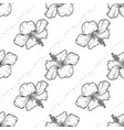 hibiscus seamless pattern of flowers vector image vector image