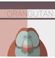 Orangutan flat postcard vector image vector image