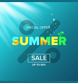 summer sale modern design template web vector image