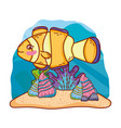cute clownfish with shells and seaweed plants vector image