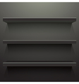 Dark background shelves vector image