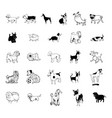 dog collection clipart vector image vector image