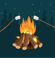 frying marshmallow on sticks fire and vector image