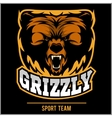 Grizzly mascot - team logo design vector image vector image