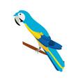isolated cute blue guacamaya vector image vector image