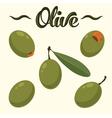 Olive set Hand drawn olives vector image