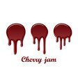 red cherry drip confiture 3d set berry sweet jam vector image vector image