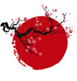 sakura branch sunset red circle frame background v vector image