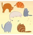 simple cats set vector image