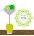 the theme lime vector image vector image