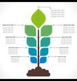 tree creative info-graphics concept vector image vector image