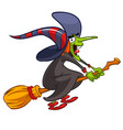 cartoon witch flying on a broom vector image vector image