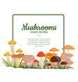 frame with cartoon mushrooms vector image