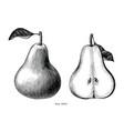 pear fruit hand draw vintage clip art isolated on vector image vector image