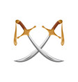 a pair of traditional turkish swords scimitar vector image vector image
