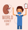 doctor surgeon with clipboard world kidney day vector image vector image