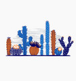 mexican desert cactus cactuses flower exotic vector image vector image