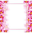 pink vanda miss joaquim orchid banner card border vector image vector image