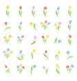 set colored tulips vector image vector image