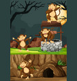wild monkeys group in many poses in animal park vector image vector image