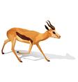 A deer vector image vector image