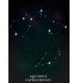 Aquarius and Capricornius constellation vector image vector image