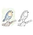 bird on branch watercolor artwork vector image