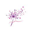 dandelion icon design vector image