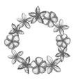 frangipani garland vector image