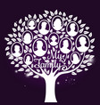 genealogy tree with shine elements vector image vector image