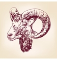 goat hand drawn llustration realistic sketch vector image vector image