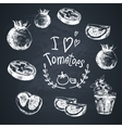 Hand Drawn Sketch of vegetables Tomatoes vector image vector image